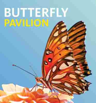 Butterfly Pavilion in Los Angeles on 01 June 2018