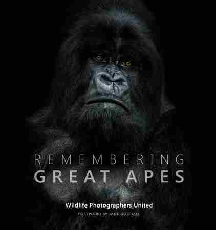 Great Apes conservation talk and auction at the Royal Geographical Society in Greater London on 18 October 2018