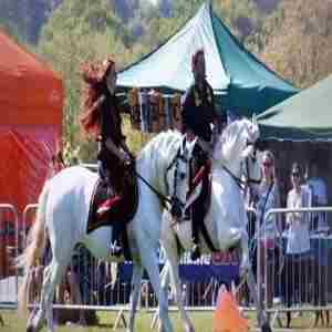 The Weald Park Country Show in Brentwood on 5 May