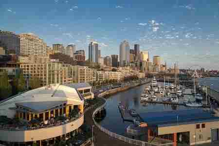 Fetal & Women's Imaging CME | Advanced OB-GYN Ultrasound Seattle 2019 in Seattle on 6 Sep