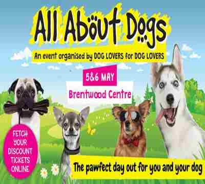 All About Dogs Show Essex 2019 in Brentwood on 5 May