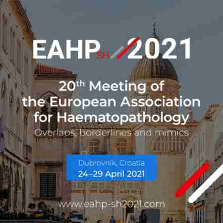 20th Meeting of the European Association for Haematopathology in Dubrovnik on 24 Apr