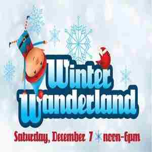Winter Wanderland in Georgia on Saturday, December 7, 2019