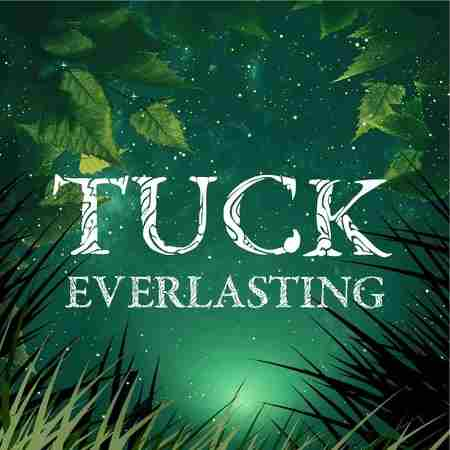 Tuck Everlasting, A Magical Family Musical from The Umbrella Stage Co in Concord MA on 6 Dec