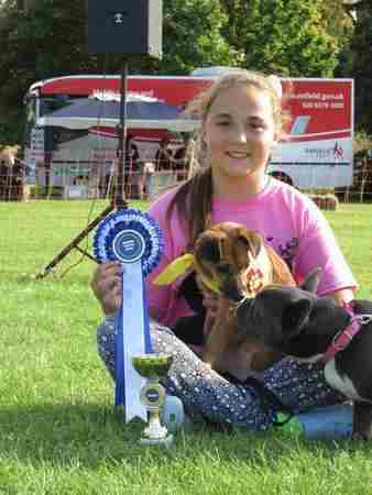 The Bucks Festivals of Dogs in High Wycombe on 30 May