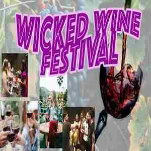 Spring Wicked Wine Fest - A day of Sips, Photos, Fun, and of course Spring! in Boston on 14 Mar