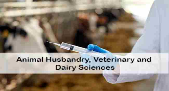 International Conference on Animal Husbandry, Veterinary and Dairy Sciences in Massachusetts on 18 Jun