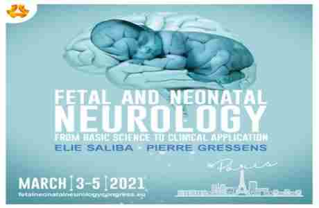 Fetal and Neonatal Neurology: From Basic Science to Clinical Application in Paris on 3 Mar