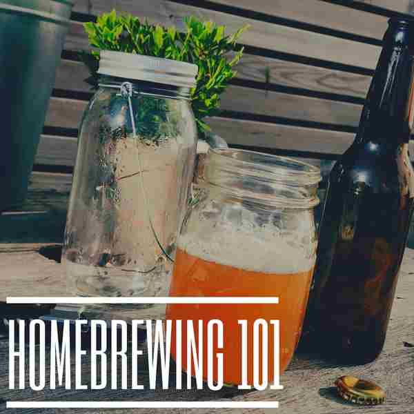 Homebrewing 101: A LetsVidya Virtual Experience in Virginia Beach on 23 Aug