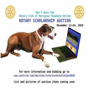 Rotary Club of Mariposa Yosemite Scholarship Auction in California on 11 Nov