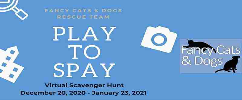 Fancy Cats and Dogs Rescue Team Presents Play to Spay Scavenger Hunt in Fairfax County on Sunday, December 20, 2020